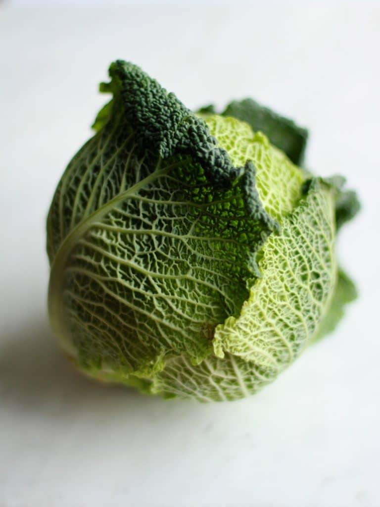 Savoy Cabbage   Natural Kitchen Adventures