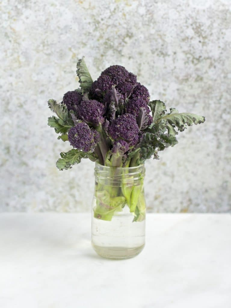 Purple Sprouting Broccoli | Natural Kitchen Adventures